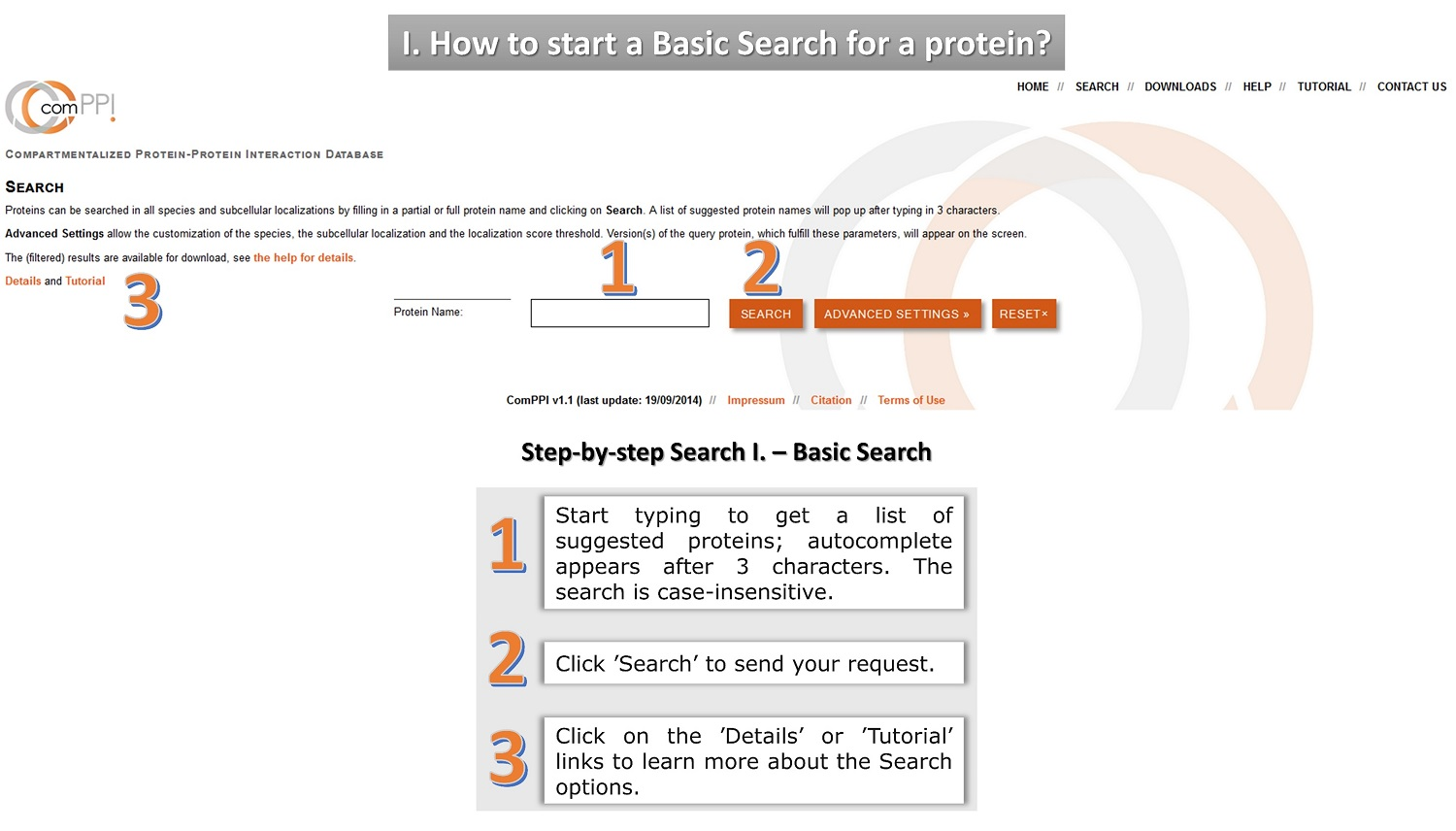 protein search tutorial 1